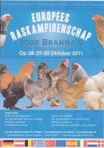 Expozitia Europeana de Brahma urias si Brahma pitic