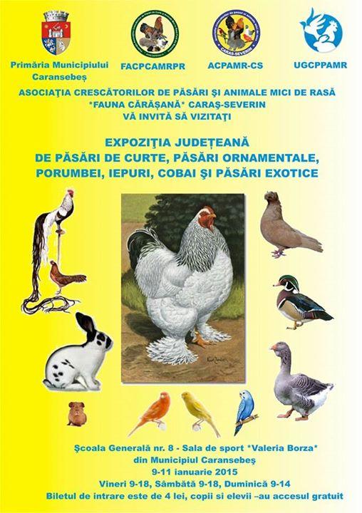 Invitatie expozitie Caransebes 2015