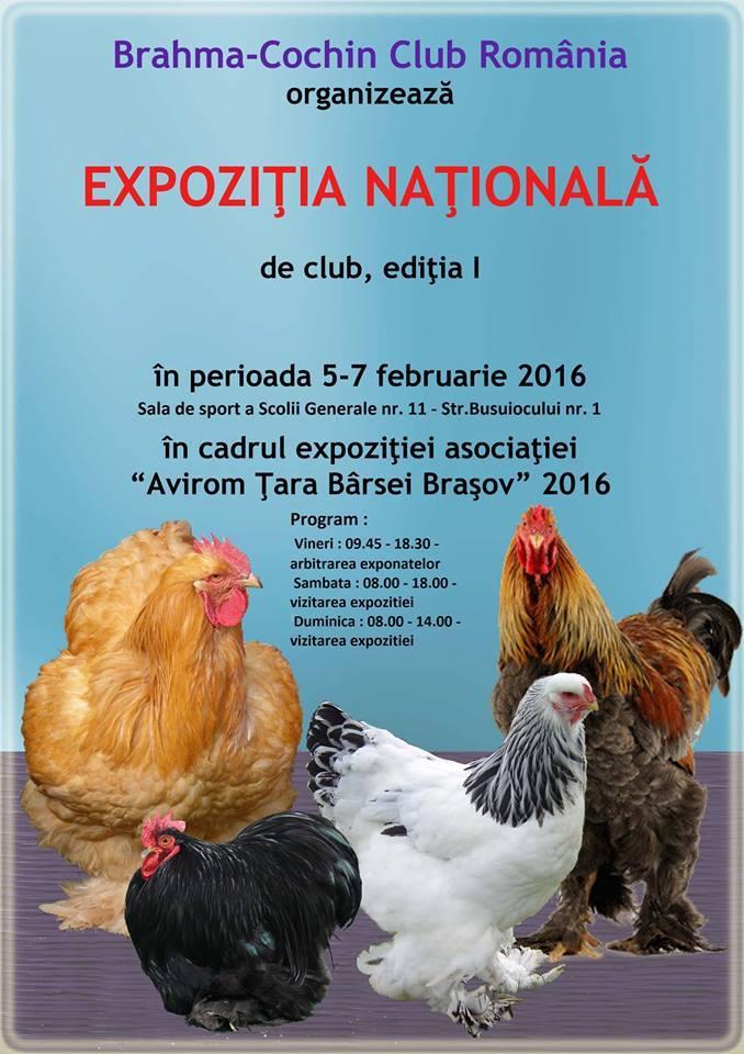 Anunt expo Brasov 2016