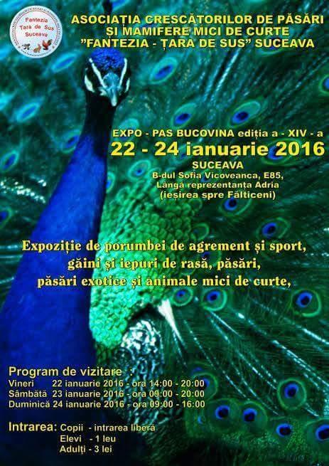 Expo suceava 2016