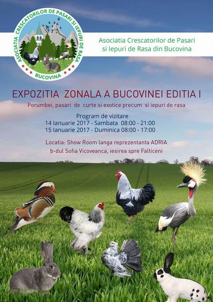 afis-expo-bucovina-2017