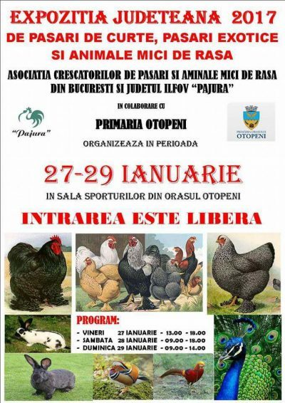 eafis-expo-pajura-2017